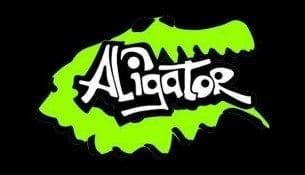Aligator Szkoła Pływania w Nowym Sączu