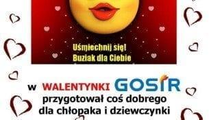 Walentynki Basen Gniezno