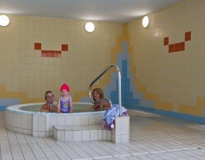 Pływalnia Kryta Delfinek - basen Pińczów, fot.http://www.delfinek.pinczow.com