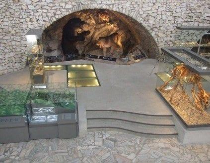 Źródło:http://www.jaskinianiedzwiedzia.pl