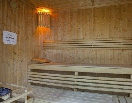 Basen Delfinek Pinczow Sauna Sucha
