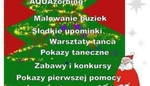 SOBOTA 6 grudnia 2014 r. Mikołajki na FALI - Aquapark Łódź