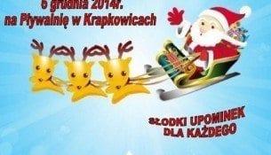 Mikołajki na basenie Delfin Krapkowice