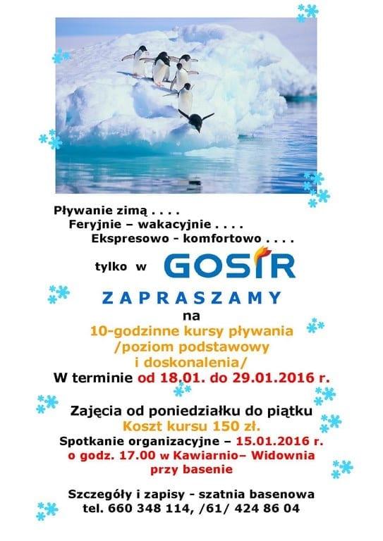 Nauka pływania na basenie w Gnieźnie